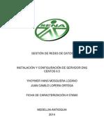 Gestión de Redes de Dato-DNS