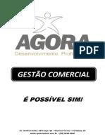 Apostila Gestao Comercial.pdf