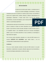 informe pedagogico