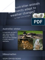 How do Australian animals adapt to weather changes?