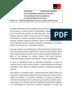 TAREFA12 Visão Da Organização Como Um Conjunto de Processos