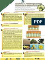 Efeitos Do Tempo de Imersao, Da Concentracao de Acido Giberelico e Da Planta Matriz Na Germinacao de Pequi