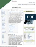 New Caledonian Crow - Wikipedia
