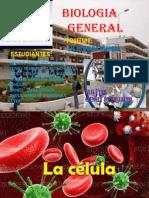 La Celula Diapositiva de Biologia.(Principal) (1)