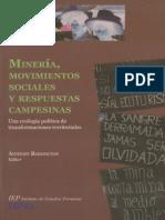 Minería ... Movimientos Sociales y Respuestas Campesinas