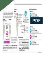 Infografia Meningitis