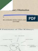 Urination Elimination- Lecture