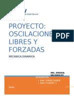 20003proyectodinamica20141