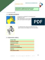 Patologia Frecuentes de Cadera