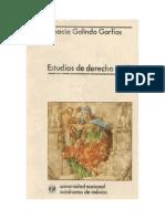 Estudios de Derecho Civil- Galindo Garfias Ignacion