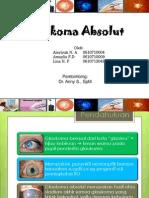Glaukoma Absolut
