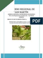 PIP Promover El Desarrollo de La Cadena de Valor de Sacha Inchi en San Martín