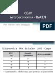 CEAV - Microeconomia - Gabarito