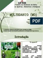 Molibdênio (Mo)