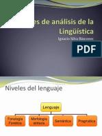 Niveles de Análisis de La Lingüsitica
