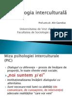 Psihologie interculturala
