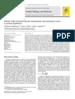 System Mapping Radical Oxidation Pathways
