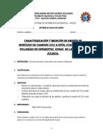 Modelo Informe Pollerias Oriinal 1