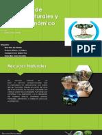 Explotacion de Recurso Naturales y Manejo Economico