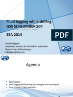 1.Fluid Logging While Drilling_SEA2014-1 PLD_V1 Paola Delgado SLB
