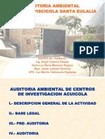 Auditorìa Granja Piscícola A