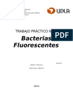 biofluerecencia