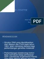 Transfer Genetik