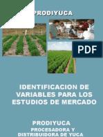 Presentacin1identificacion Pptxautoguardado 110728184727 Phpapp02