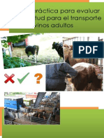 1386755999 Guia Practica Transporte Bovinos