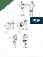 Linha Do Ombro e Linha Da Cinturapélvica No Desenho Dafigura