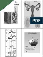 20- embarazo y lactancia.pdf