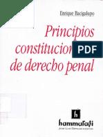 Principios Constitucionales de Derecho Penal - Bacigalupo