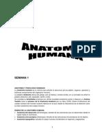 Semana 1-Anatomía Humana