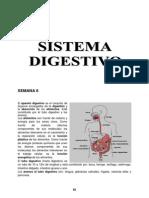 SEMANA 6 - Aparato Digestivo