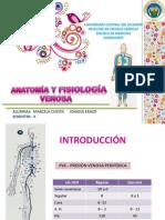 Anato y Fisio Venosa