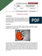 -LEVANTAMIENTO-DE-CHIMENEAS-Teoria (1)