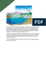 CICLOS DE LA NATURALEZA.docx