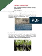 Ejemplos de Tipos de Ecosistemas