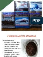 Cat á Lo Got Abaco Pipa 2014
