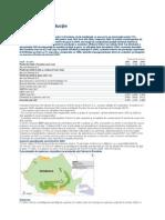raport petrom 2009