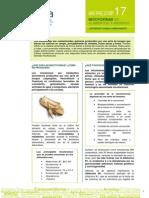 Micotoxinas en Alimentos Elika