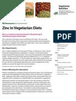 Zinc Vegetarian Nutrition