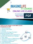 SAP ABAP Online Training - Imaginelife