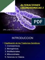 cromosomicas I VI sem 2009