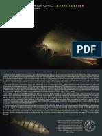 Sport Fish of Ohio Field Guide