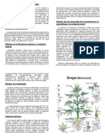Drogas (Marihuana)