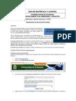 Instructivo Matrícula Flexible 20142