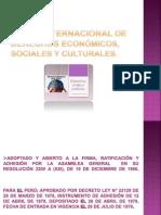 Pacto Internacional de Derechos Económicos,