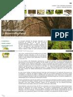 Www Bosques Naturales Com Actividad ASP