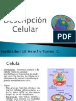 Clase 1 La Celula.pptx